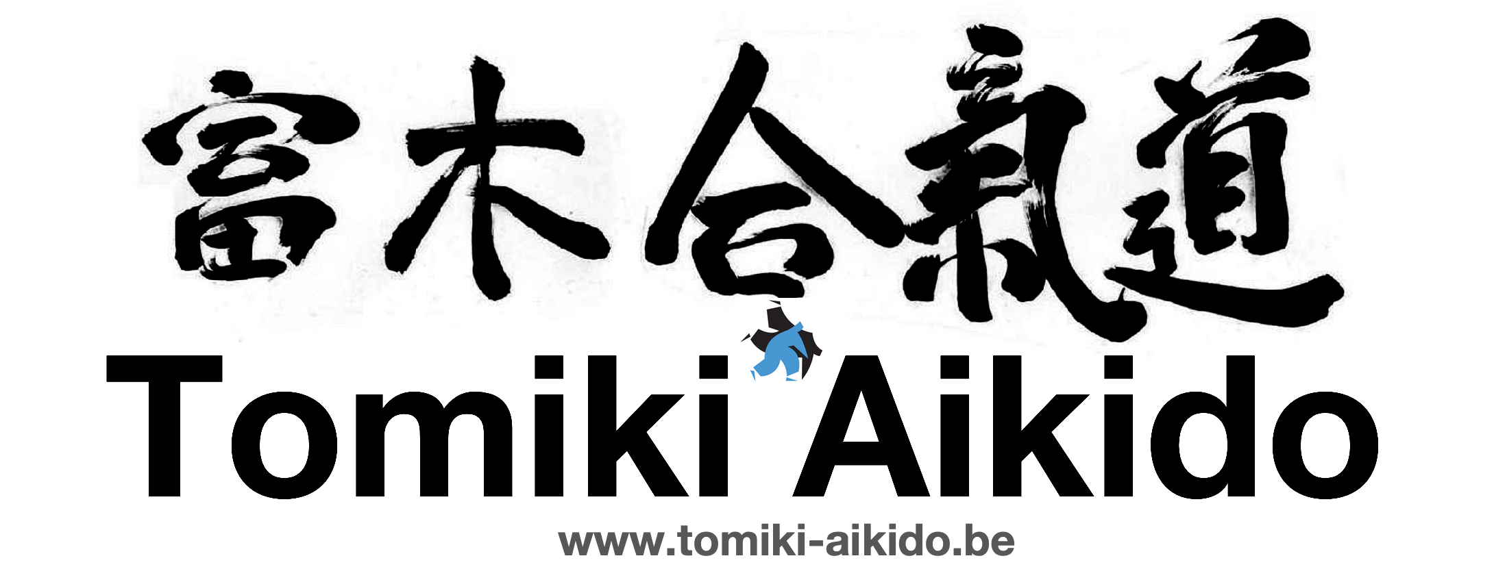 Tomiki Aikido Kanji